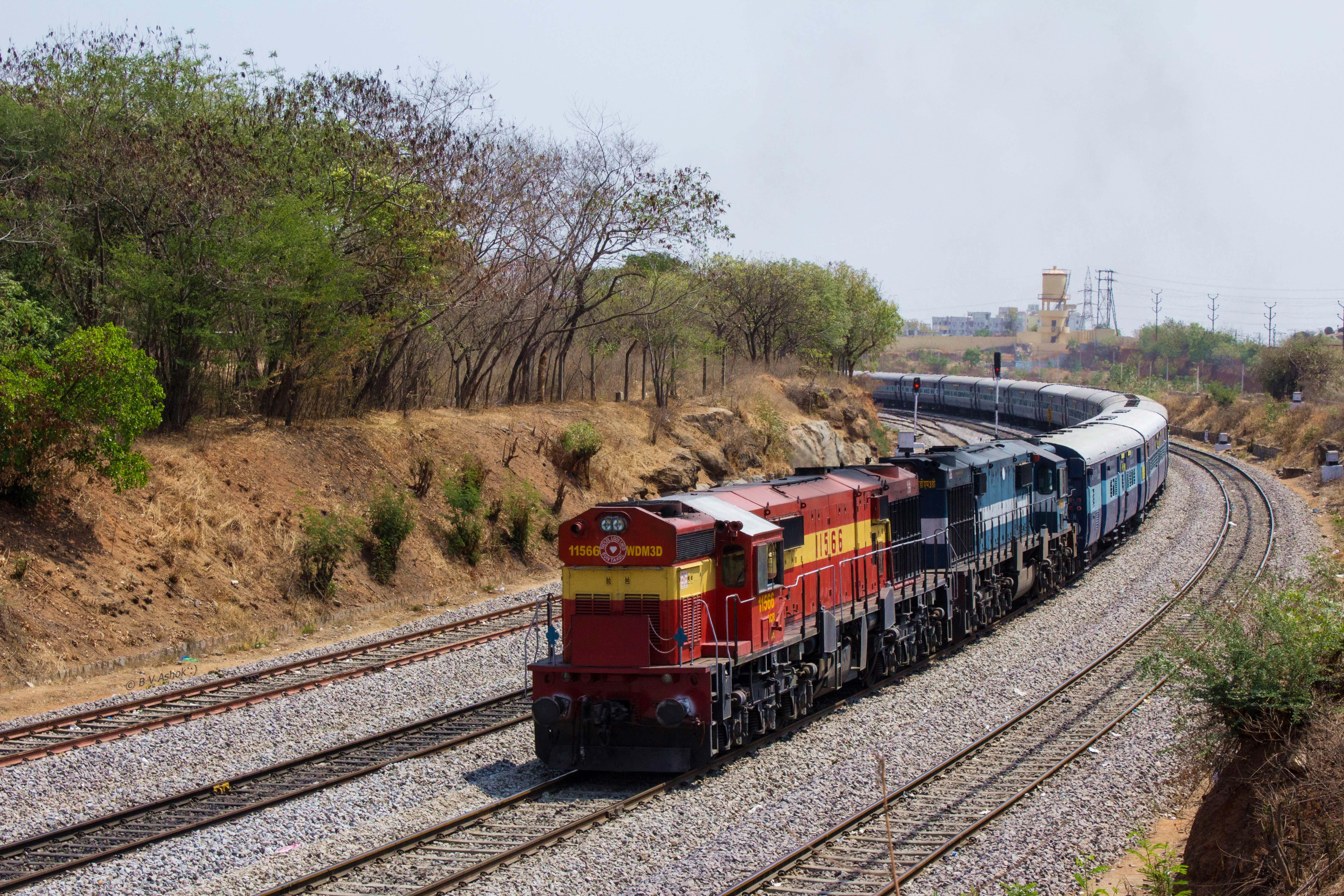 Image Credits: Belur Ashok Via Flickr.com