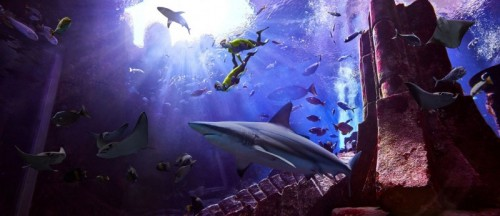 Atlantis The Palm is here with a Shark Week celebration