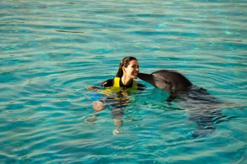 Atlantis The Palm's marine experiences