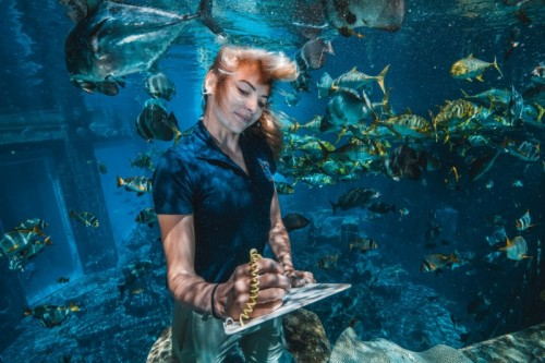 Atlantis, Dubai Joins World Association Of Zoos And Aquariums As Member Of A Global Community Working To Support Wildlife_TDB